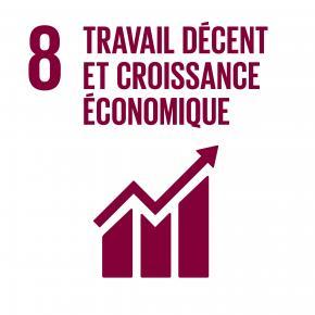 Objectif 8 : Travail décent et croissance économique