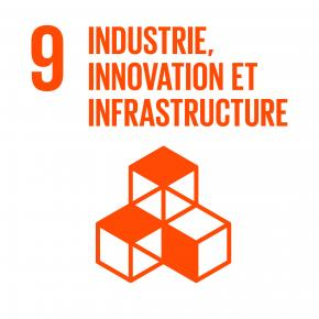 Objectif 9 : Industrie, innovation et infrastructure