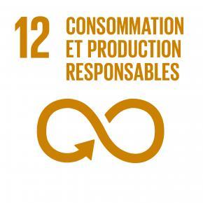 Objectif 12 : Consommation et production durables
